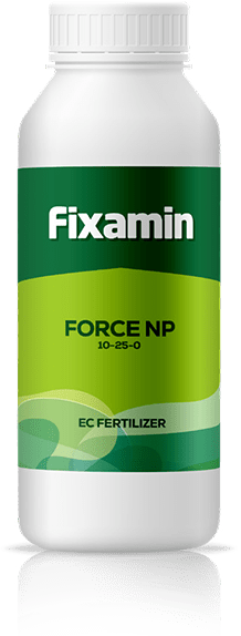 Force NP 10-25-0