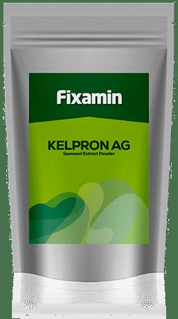 Kelpron AG