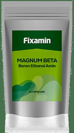Magnum Beta Boron Ethanol Amin