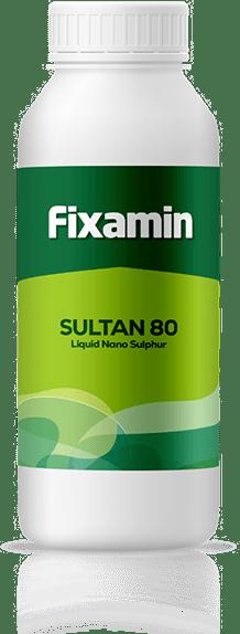 Sultan 80